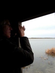Barry Jones searches the endless skies and wetlands for some of the most rare birds on earth.