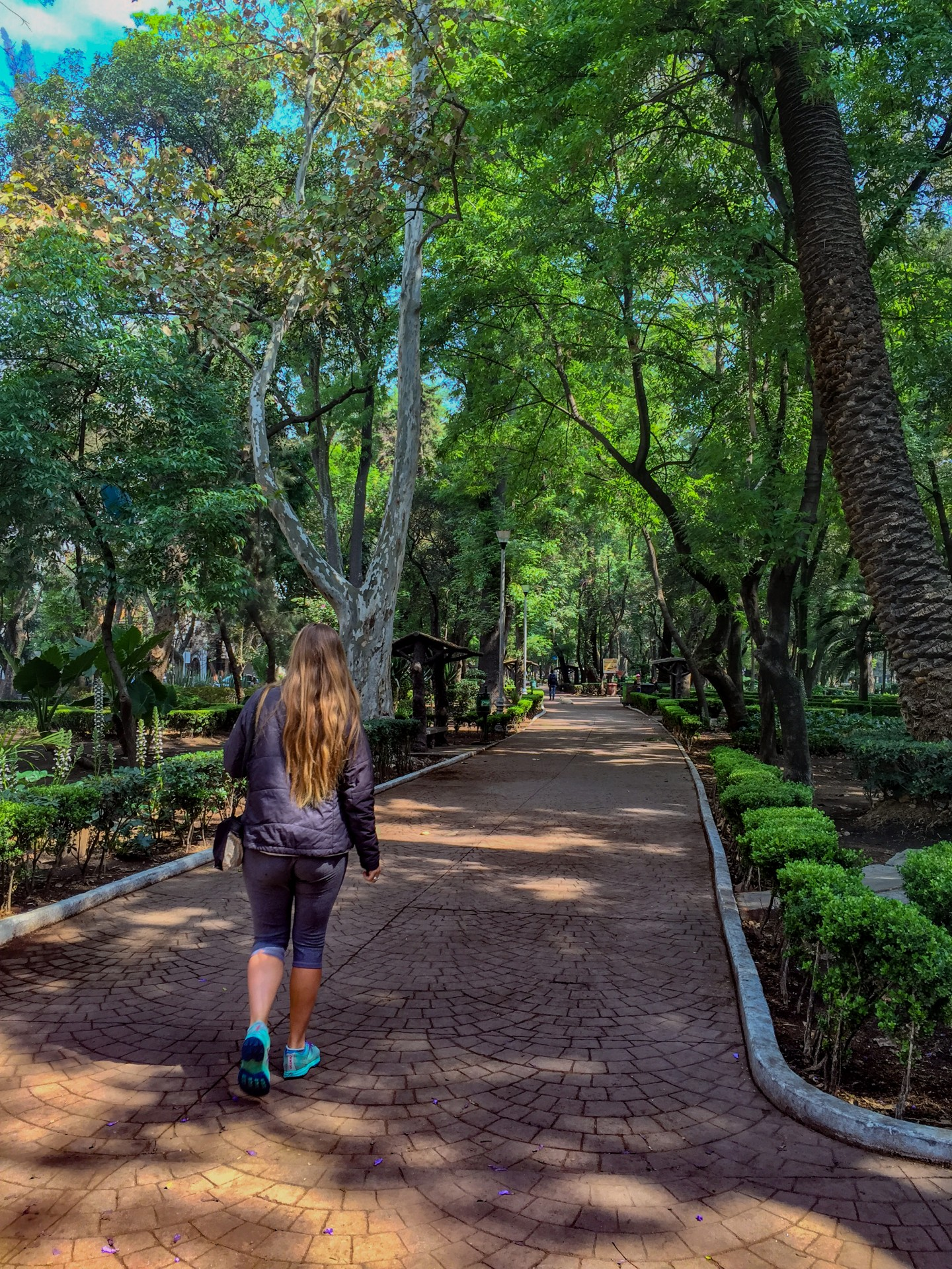 I don't think most people know that Mexico City is incredibly green, one of the most lush and verdant cities I have ever visited. Here Shannon walks the old velodrome track in the center of Condesa.