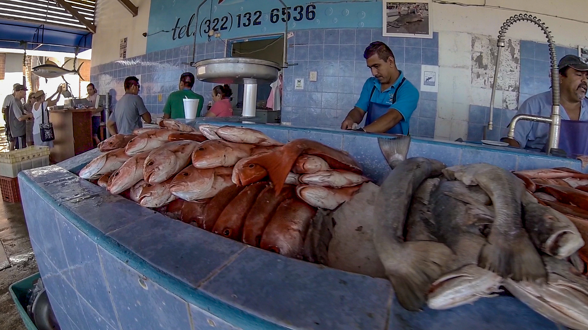 The fish market in La Cruz.